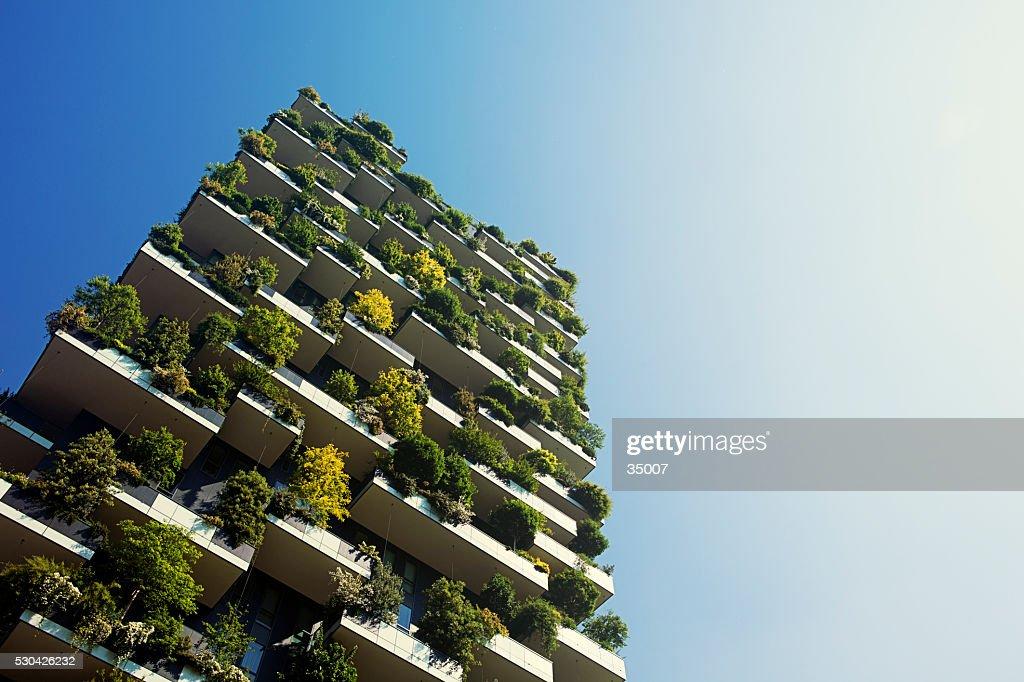 green apartment building : Stock Photo