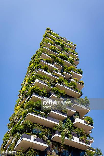 green apartment building