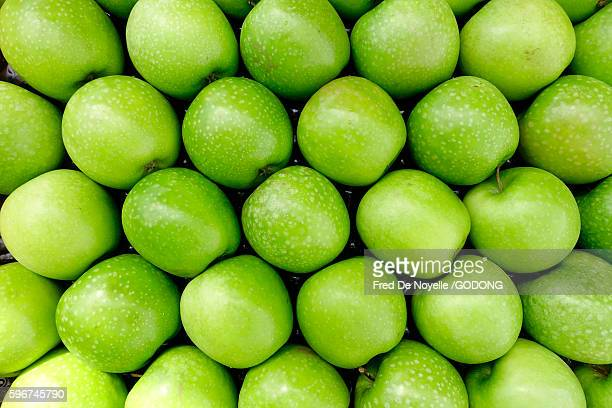 green apples. granny smith. - sallanches stock pictures, royalty-free photos & images