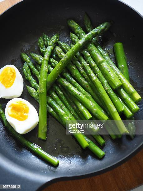 Green Asparagus and Boiled Egg Italy Europe