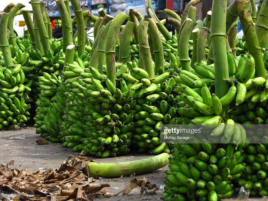Green bananas at an Indian market : Stock Photo