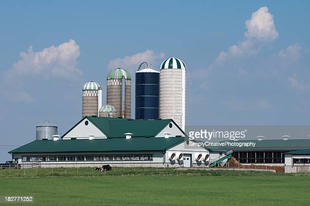 グリーンのバーンズに酪農場