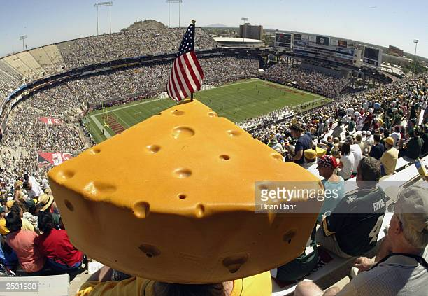 Green Bay Packers fan Linda Reinhardt wears her cheesehead in temperatures over 100 degrees at the start of a game against the Arizona Cardinals on...