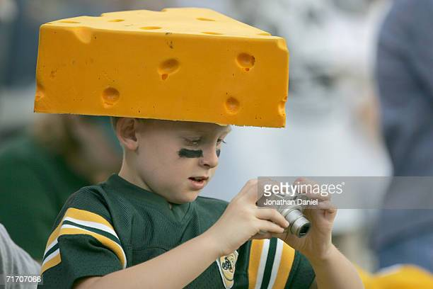 Green Bay Packers fan looks at the photograph he just snapped during the preseason game against the Atlanta Falcons on August 19 2006 at Lambeau...