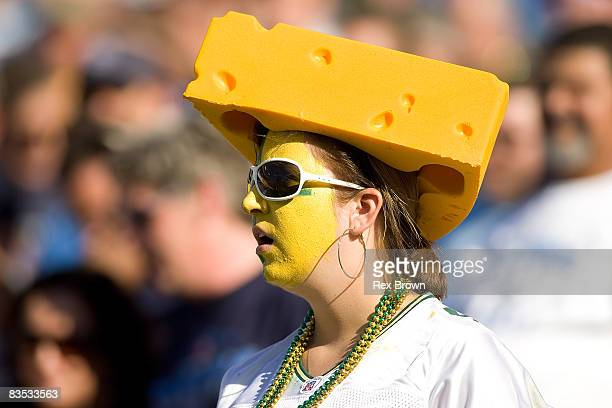 Green Bay Packers fan looks on during the loss to the Tennessee Titans at LP Field on November 2 2008 in Nashville Tennessee The Titans defeated the...