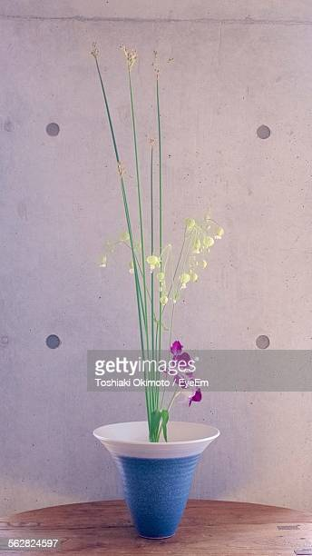 Green Bell Flowers In Vase On Table Against Wall