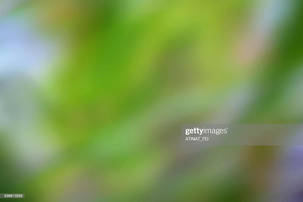 Borrão de fundo abstrato verde : Foto de stock
