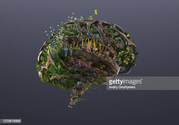 green brain - sustainability stock pictures, royalty-free photos & images