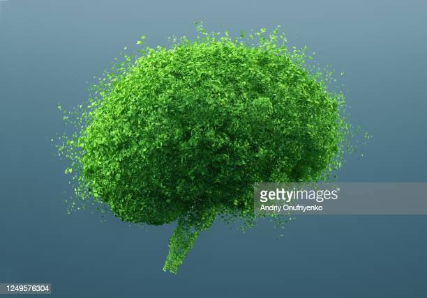 green brain - smart stock pictures, royalty-free photos & images
