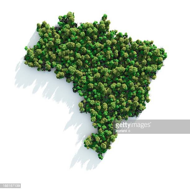 green brazil - brazil stock pictures, royalty-free photos & images