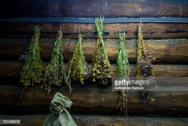 green brooms hanging on log cabin wall - sauna stock-fotos und bilder