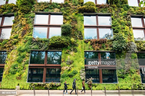 green building in paris - facade stock pictures, royalty-free photos & images