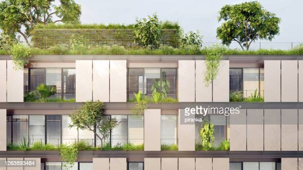 green building - building exterior stock pictures, royalty-free photos & images