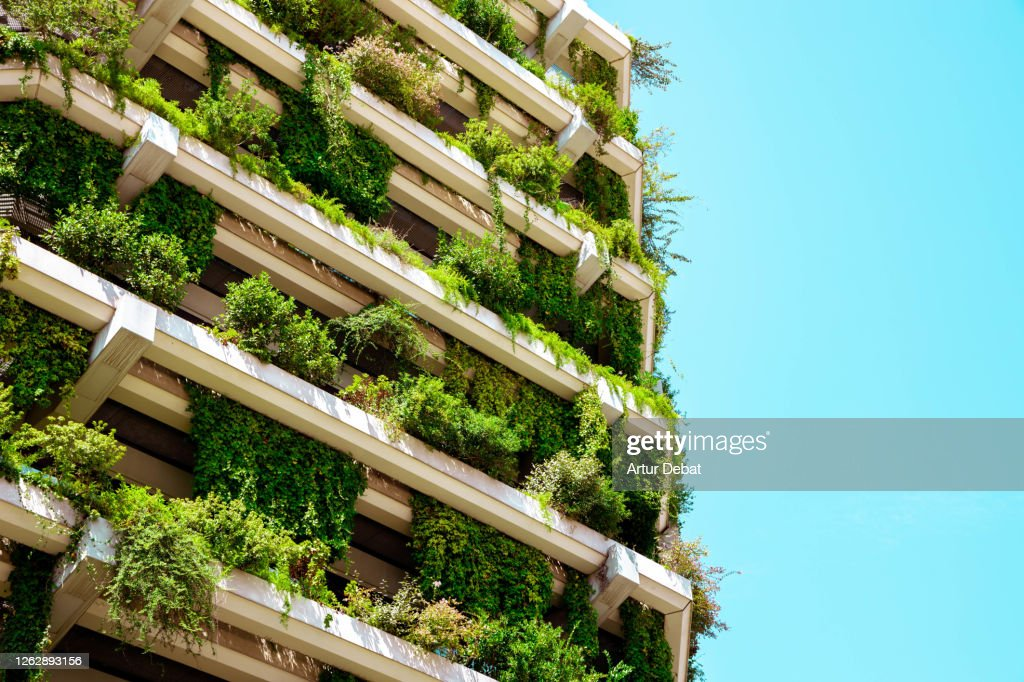 Green building with vertical garden. : Stock Photo