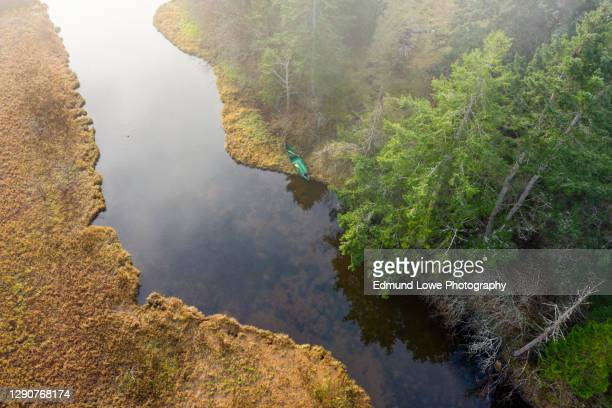 green canoe on a slough. - marsh stock pictures, royalty-free photos & images