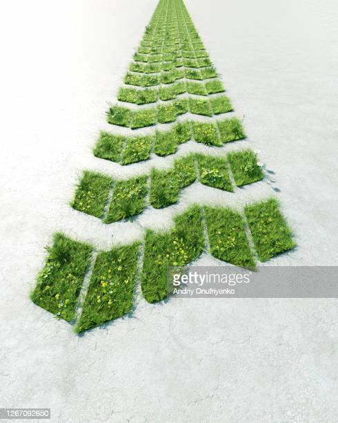 green car tire track - sustainability stock pictures, royalty-free photos & images