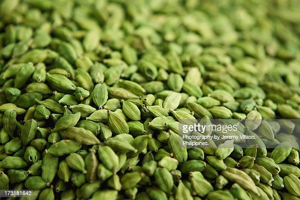 green cardamom - cardamom stock photos and pictures