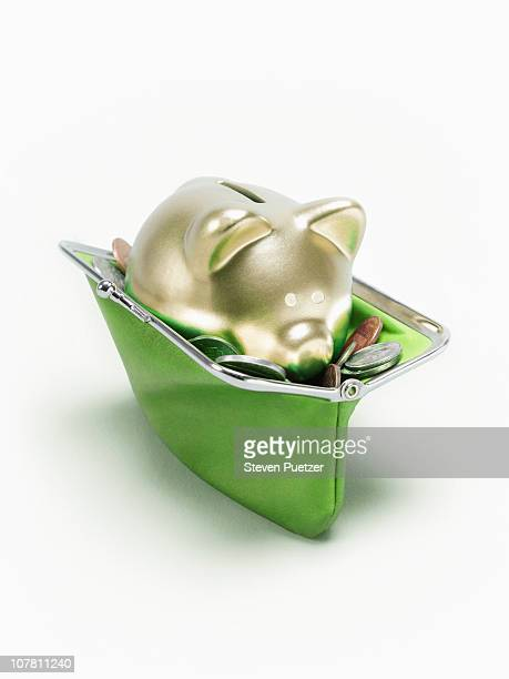 Green change purse with coins and gold piggy bank