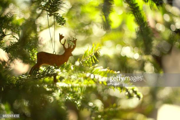 green christmas - focus on background stock pictures, royalty-free photos & images