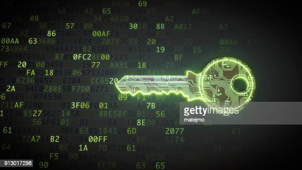green circuit digital key on binary code - encryption stock pictures, royalty-free photos & images
