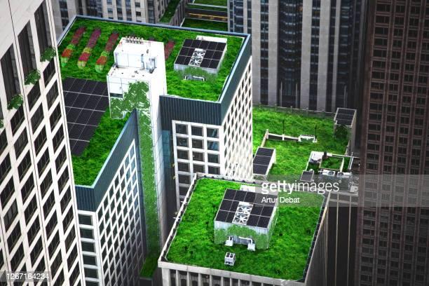 green city - 生態系 ストックフォトと画像