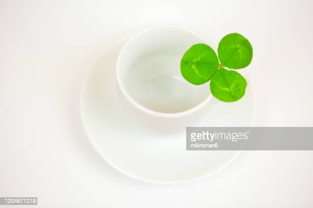 green clovers and a white cup - st patricks background stock pictures, royalty-free photos & images