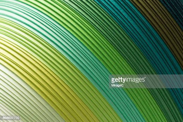 Green Colored Paper Stacking in Curve Shape