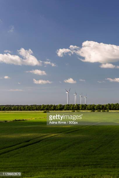 Green countryside field with wind turbines in background