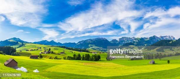 green countyside of canton of appenzell, switzerland. - valle fotografías e imágenes de stock
