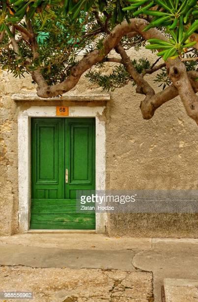 Green Door Under Olive Tree