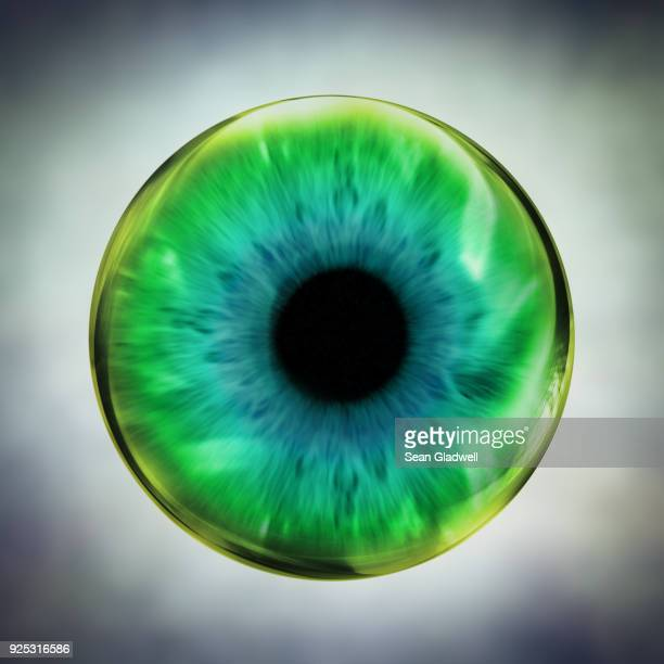 green eye - eyeball stock pictures, royalty-free photos & images