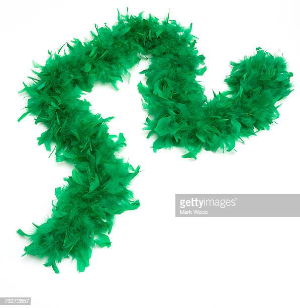 'Green feather boa, close-up'