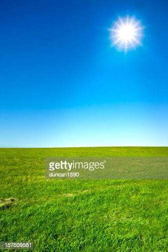 green field and clear blue sunny sky high