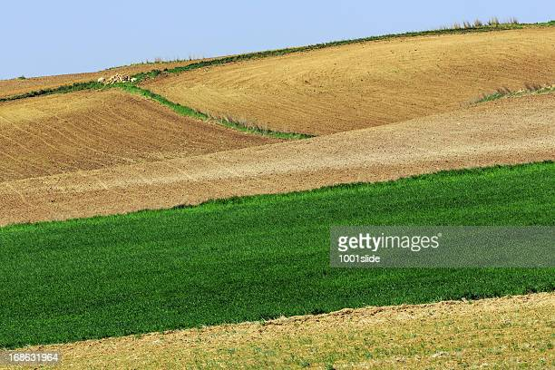 green field - six spaces - central anatolia stock photos and pictures