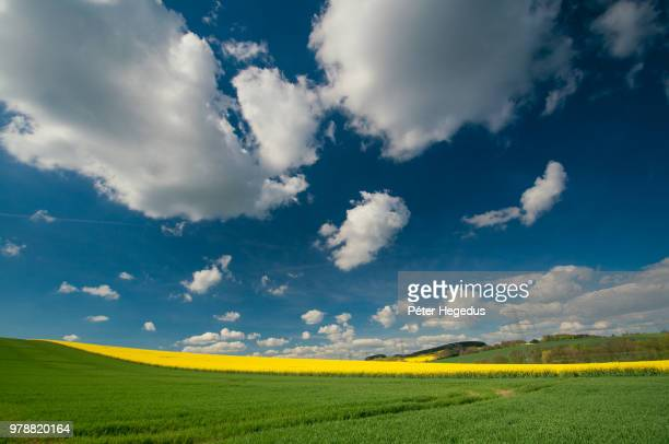 green field under clouds - wide angle stock pictures, royalty-free photos & images