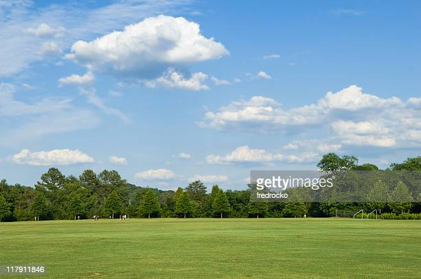 Green field with trees and sky in the background