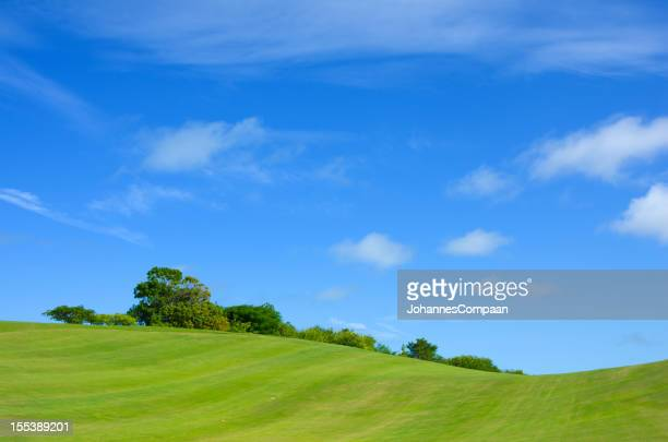 green fields and blue sky - green golf course stock pictures, royalty-free photos & images