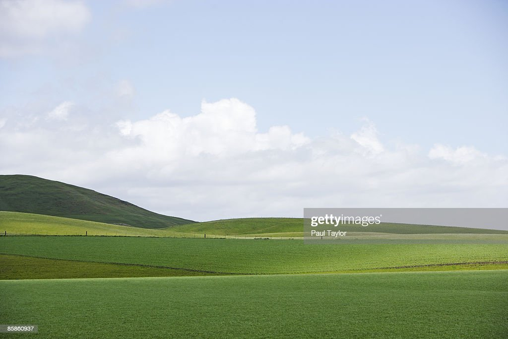 Green fields and hills : Stock-Foto