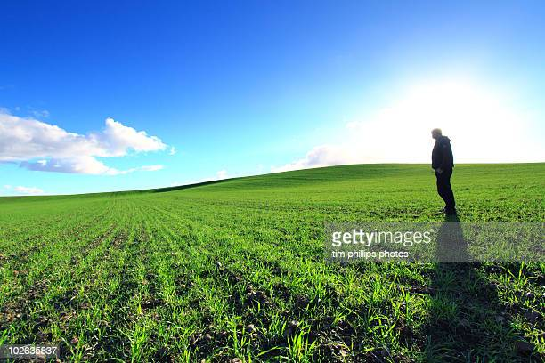 Green Fields Eyre Peninsula Australia
