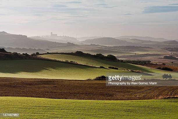 green fields. - iñaki mt stock photos and pictures