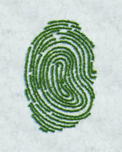 Green fingerprint