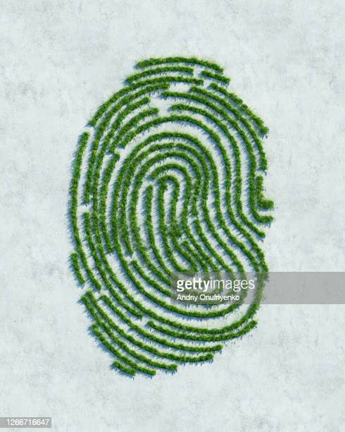 green fingerprint - environmental issues stock pictures, royalty-free photos & images
