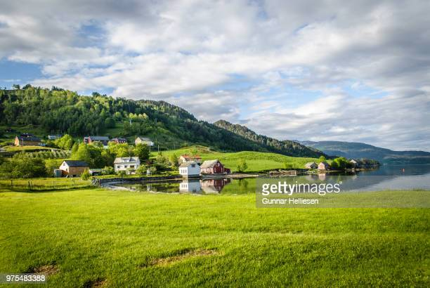 green fjord - gunnar helliesen stock pictures, royalty-free photos & images