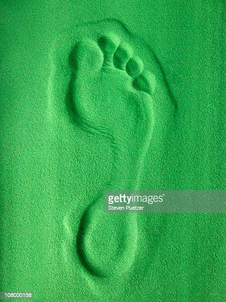 green footprint - carbon footprint stock pictures, royalty-free photos & images