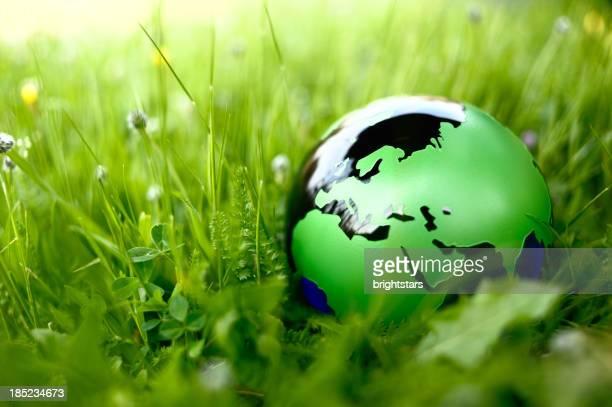 Mundo en la naturaleza verde
