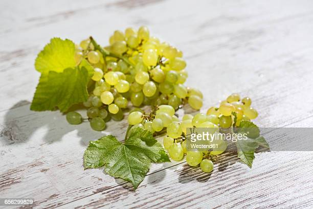 green grapes on wood - white grape stock photos and pictures