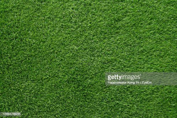 green grass background, artificial grass on soccer field - gras stock pictures, royalty-free photos & images