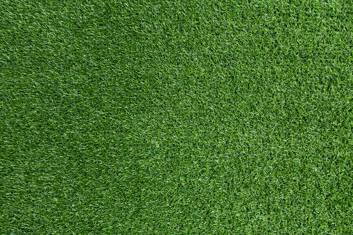 Green grass background - gettyimageskorea
