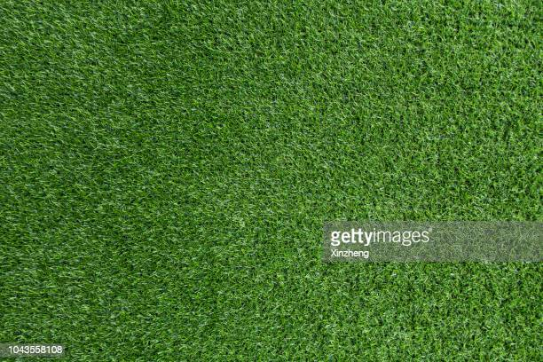 green grass background - voetbalveld stockfoto's en -beelden