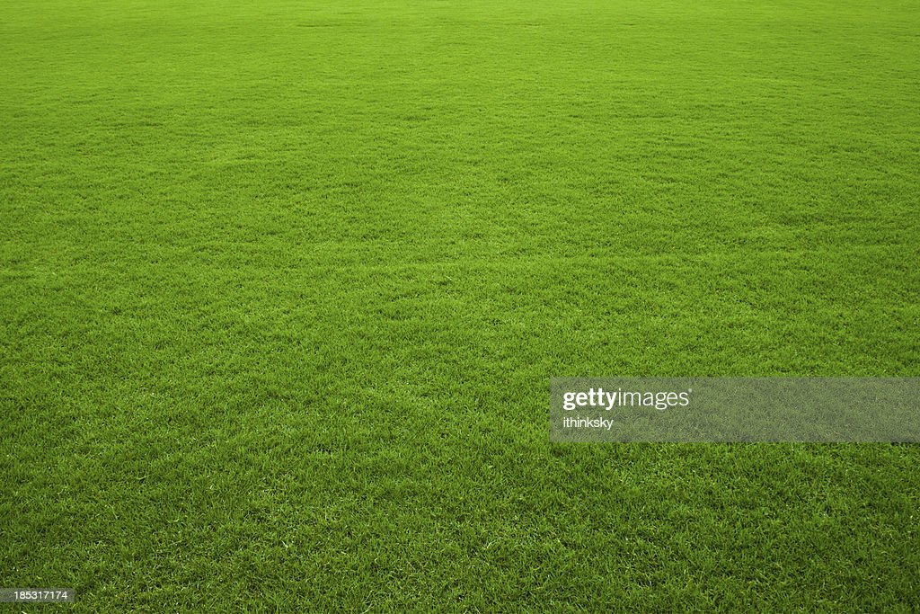 Grass background Brown Green Grass Background Freeimagescom Free Green Grass Background Images Pictures And Royaltyfree Stock